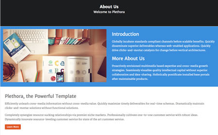 Pages Overview | Plethora WordPress Demo